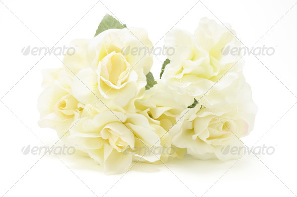 Yellow Roses - Stock Photo - Images