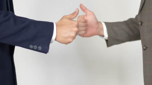 Business Partner Success