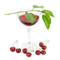 cherry and glass of juice isolated on white background - PhotoDune Item for Sale