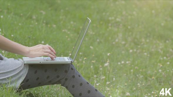 Using Laptop On Grass