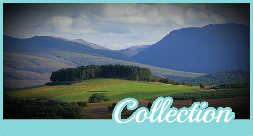 Scotland Exclusive