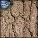 Tree Bark #3 - GraphicRiver Item for Sale