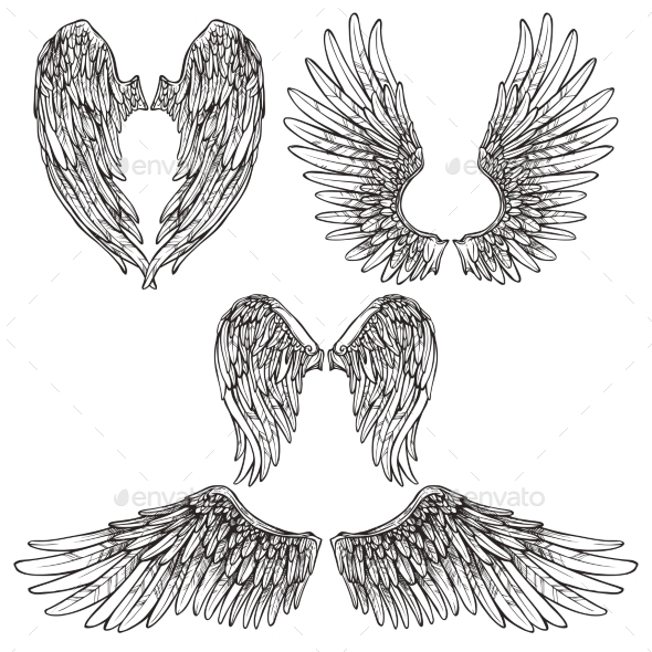 GraphicRiver Wings Sketch Set 11892050