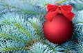 Red Christmas bauble on a fir tree - PhotoDune Item for Sale