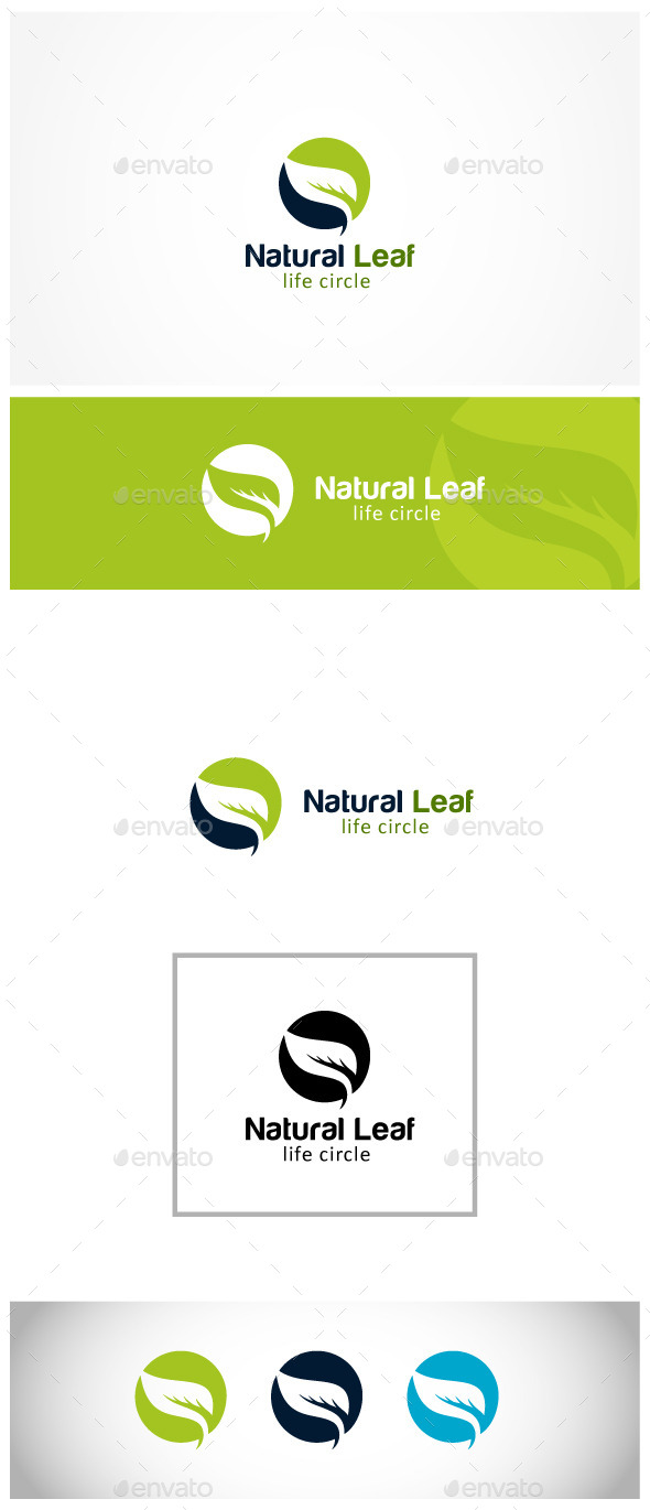 GraphicRiver Leaf Insurance 11904539