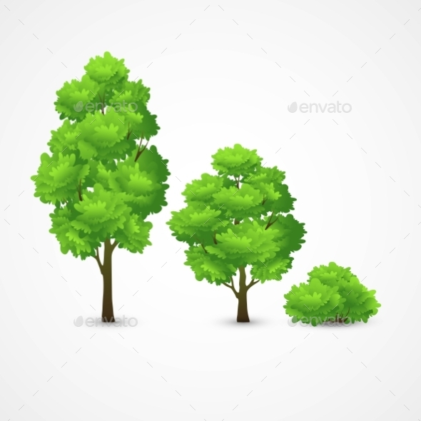 GraphicRiver Different Trees 11907083