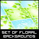 Set of Backgrounds with Flowers - GraphicRiver Item for Sale