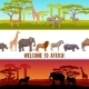 Horizontal African Animals Banners Set - GraphicRiver Item for Sale