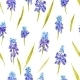 Provence Watercolor Pattern