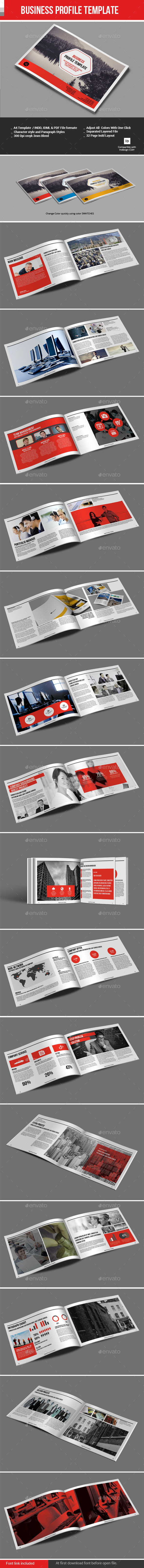 GraphicRiver Business Profile Template 11939359