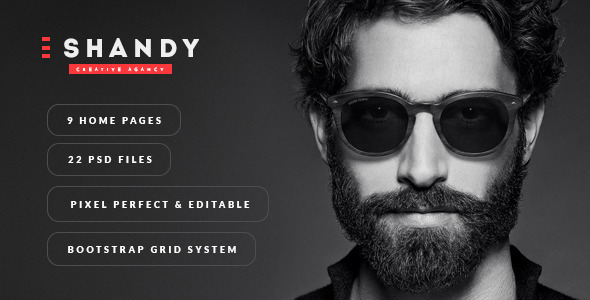 ThemeForest Shandy Agency & Portfolio PSD Template 11847752