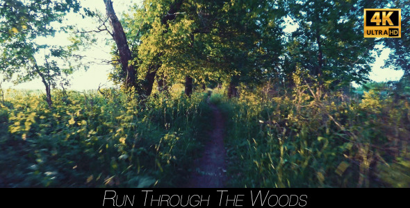 VideoHive Run Through The Woods 11943791