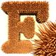 Fur Letters 3D