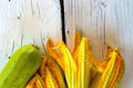 Flowers of courgettes