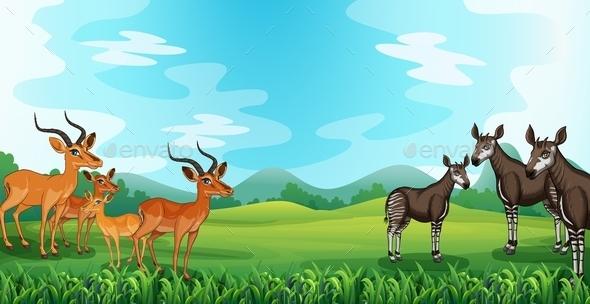 GraphicRiver Animals 11963578
