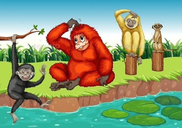 GraphicRiver Monkeys 11964245
