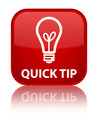 Quick tip (bulb icon) red square button - PhotoDune Item for Sale