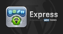 Express App Compatible WP Themes
