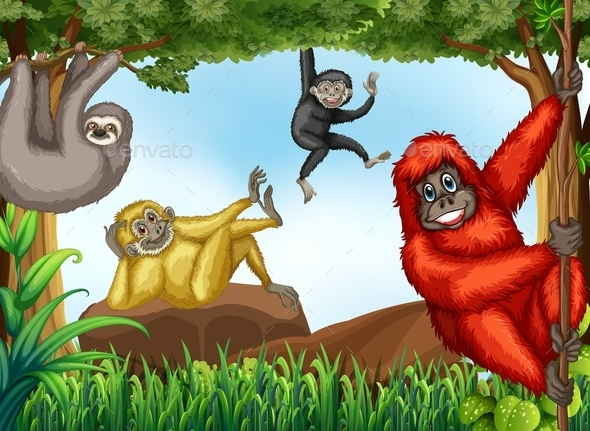 GraphicRiver Monkeys 11966348