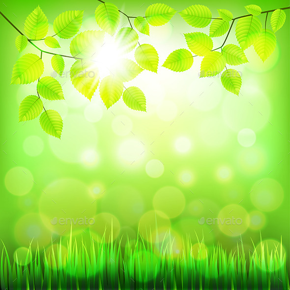 GraphicRiver Summer Nature Background with Green Foliage 11972677
