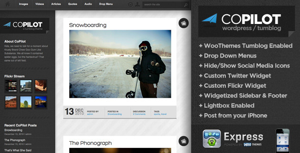 CoPilot WordPress and Tumblog Theme - ThemeForest