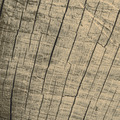 wooden texture - PhotoDune Item for Sale