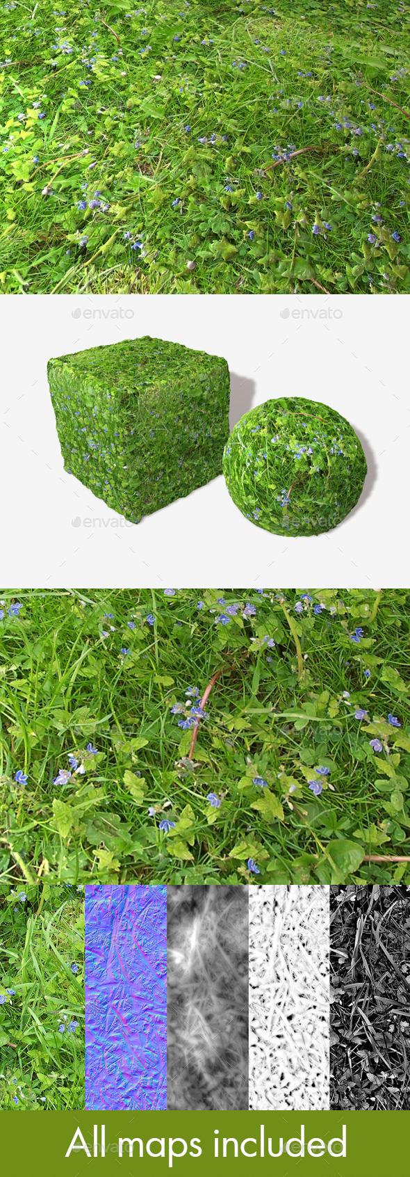 3DOcean Plants Weeds Grass Seamless Texture 11981626