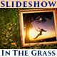 Slideshow In The Grass - VideoHive Item for Sale