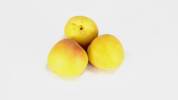 Apricot Rotating