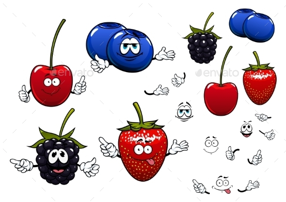Strawberry, Blackberry, Cherry, Blueberry Fruits