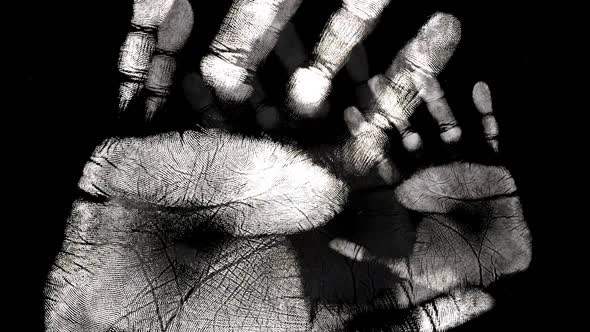 White Hand Print