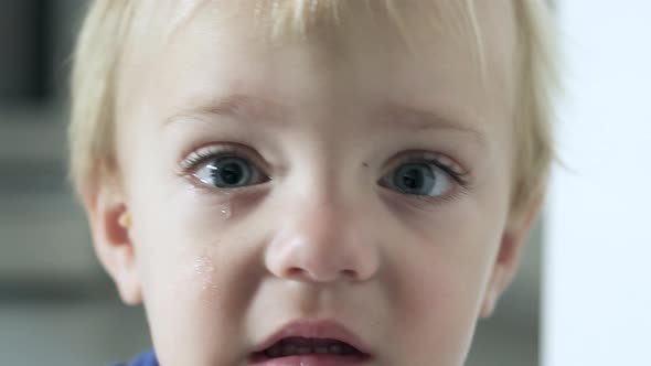 Scenes Of A Boy Crying 3 Of 6