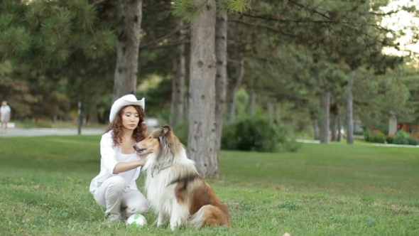 Girl With Her Dog In The Park Collie Dog Training