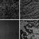 4 Grunge Textures