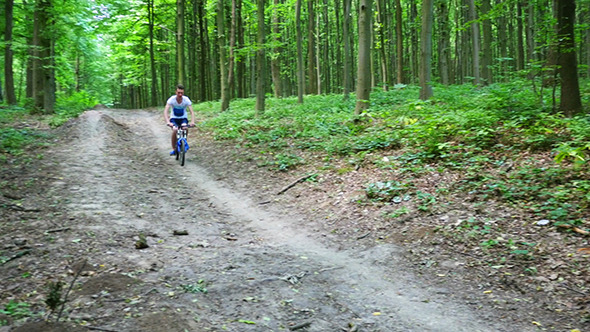 Teen Biking On Forest Trails