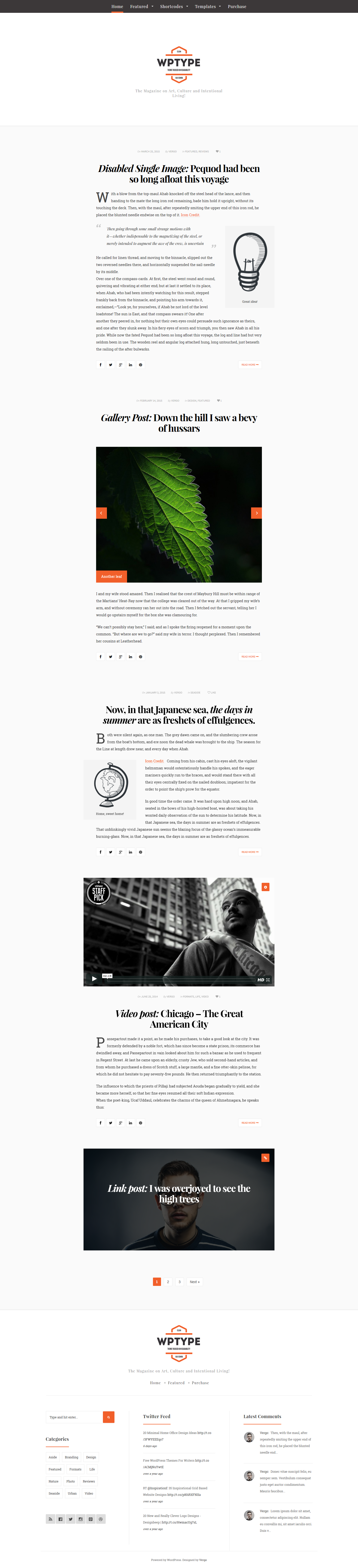 Type clean minimalist blogging theme by vergo for Minimalist homepage