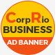 Business HTML5 GWD Ads