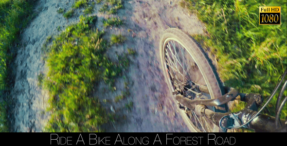 VideoHive Ride A Bike Along A Forest Road 12060289