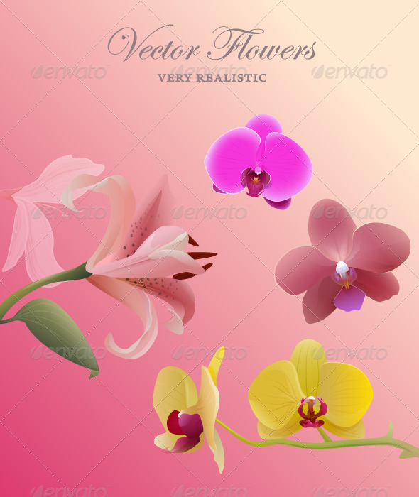 GraphicRiver Flowers set 147588