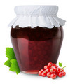 Red currants jam - PhotoDune Item for Sale