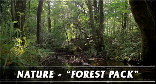 Nature - Forest Pack