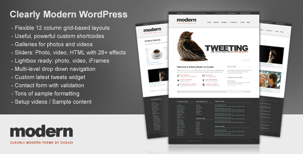 Clearly Modern WordPress by Cudazi