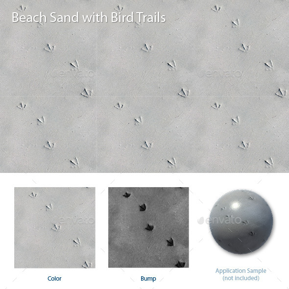 3DOcean Beach Sand with Bird Trails 12152715
