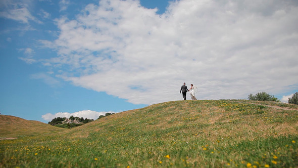 VideoHive Newlyweds Outdoors 12155192