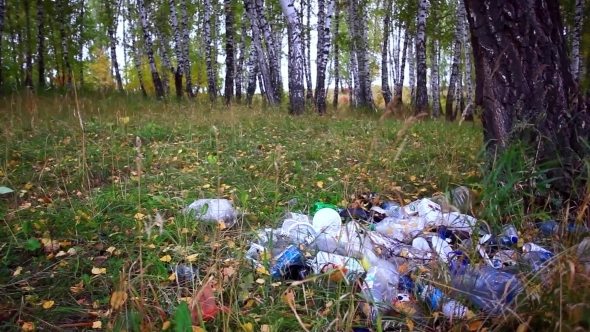 VideoHive Garbage In The Forest In Autumn Environmental 12158390