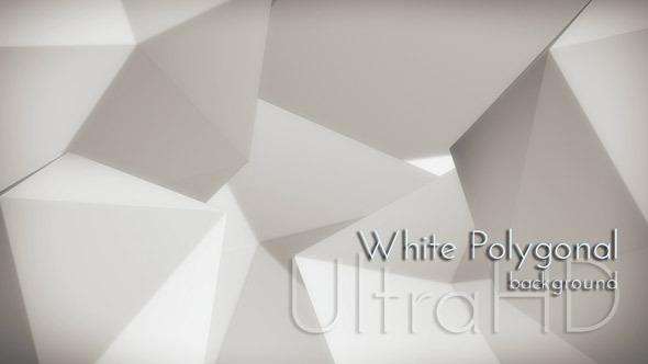 Motion White Polygon