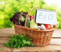 Bio Vegetables in a Basket with Bio Note
