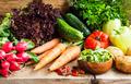 Bio Vegetables Assortment Freshly Picked