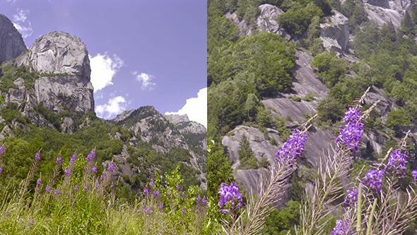 VideoHive Mountain Landscape 12173124
