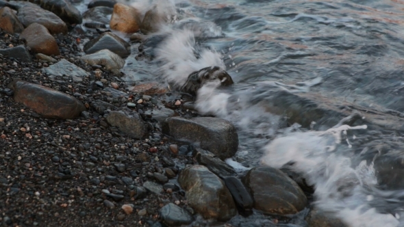 VideoHive Water At Seaside With Stone 12173382